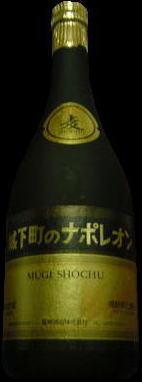 http://www24.big.or.jp/~nakatomo/pict_shouchuu/jyoukamachi2.jpg